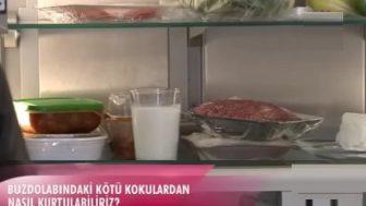 Buzdolabı İçindeki Kötü Koku Nasıl Önlenir?