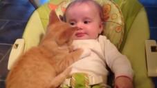 Hayvan Dostlukları Ve Hayvanların Bebeklere Olan Sevgileri Mütiş